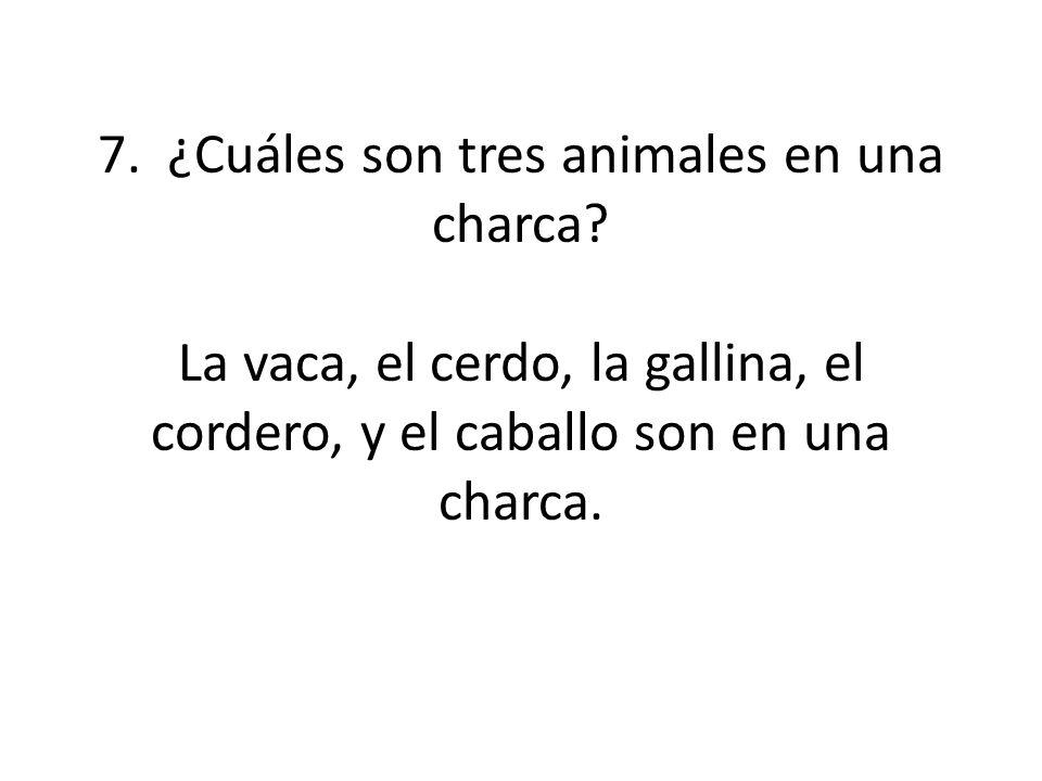 7. ¿Cuáles son tres animales en una charca? La vaca, el cerdo, la gallina, el cordero, y el caballo son en una charca.