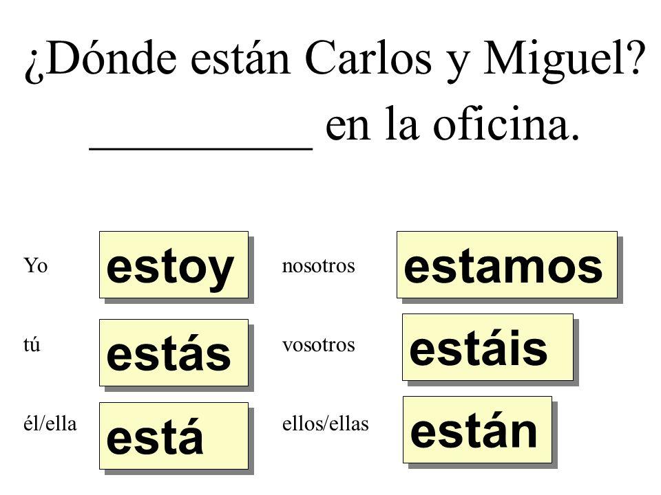 ¿Dónde están Carlos y Miguel. _________ en la oficina.