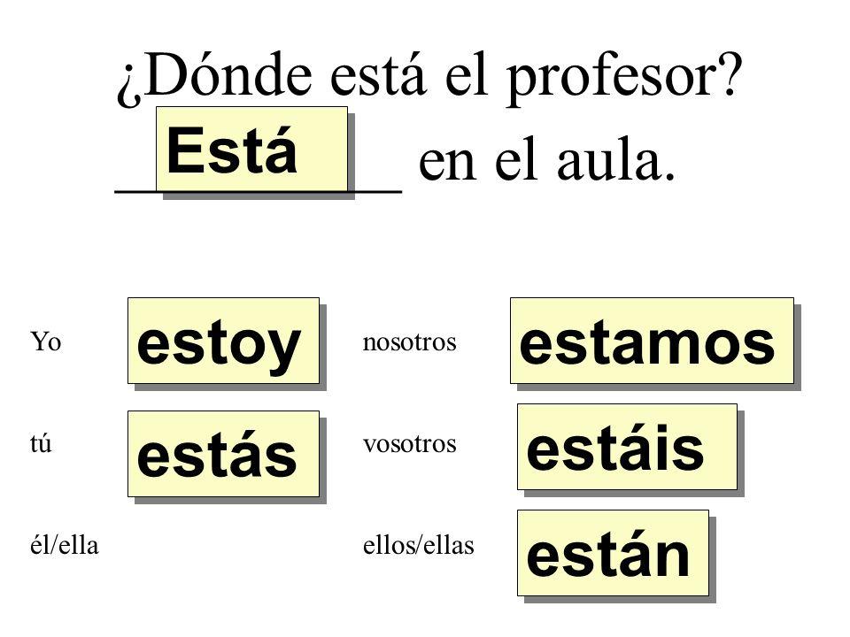 ¿Dónde está el profesor.