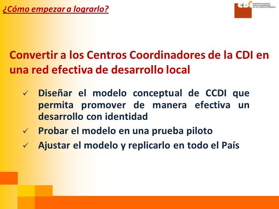 Convertir a los Centros Coordinadores de la CDI en una red efectiva de desarrollo local Diseñar el modelo conceptual de CCDI que permita promover de manera efectiva un desarrollo con identidad Probar el modelo en una prueba piloto Ajustar el modelo y replicarlo en todo el País ¿Cómo empezar a lograrlo