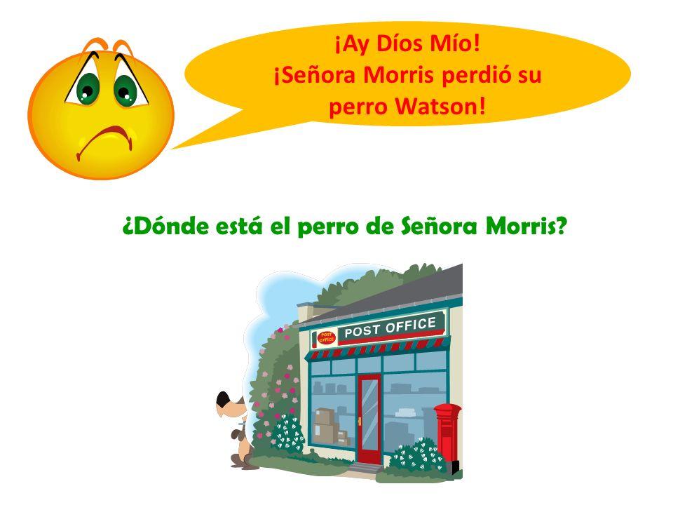 ¿Dónde está el perro de Señora Morris? ¡Ay Díos Mío! ¡Señora Morris perdió su perro Watson!