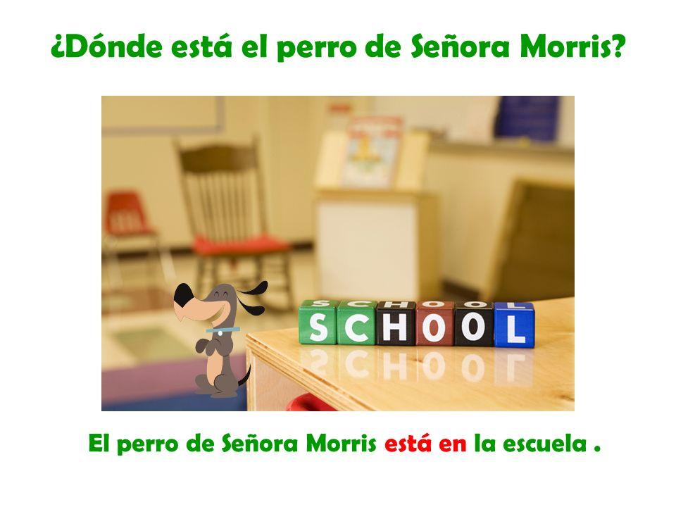 El perro de Señora Morris está en la escuela. ¿Dónde está el perro de Señora Morris?