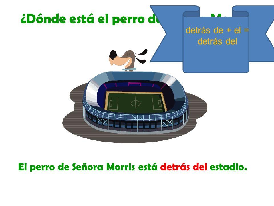 El perro de Señora Morris está detrás del estadio. ¿Dónde está el perro de Señora Morris? detrás de + el = detrás del