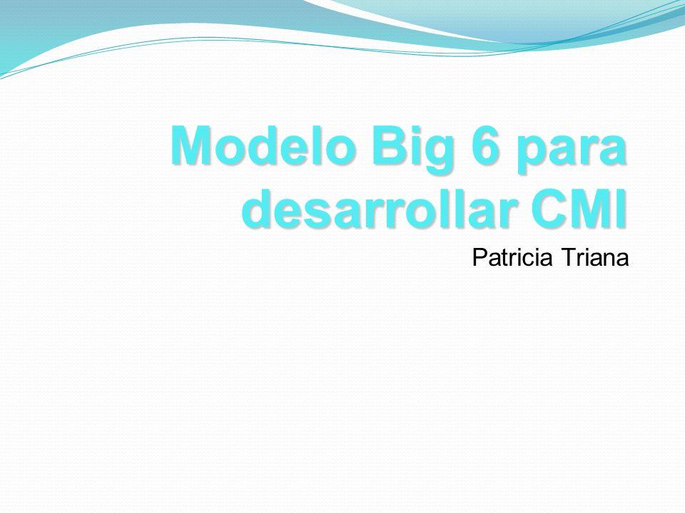 Modelo Big 6 para desarrollar CMI Patricia Triana