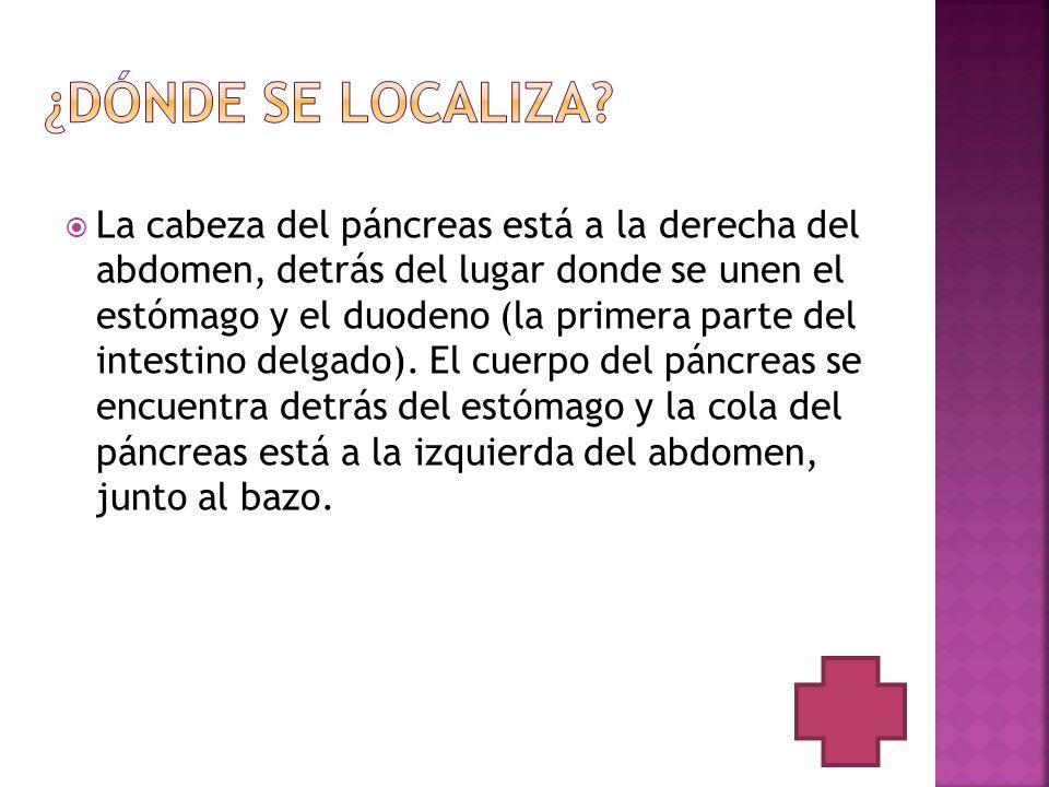 El tipo de cáncer de páncreas más común, son los tumores exocrinos.