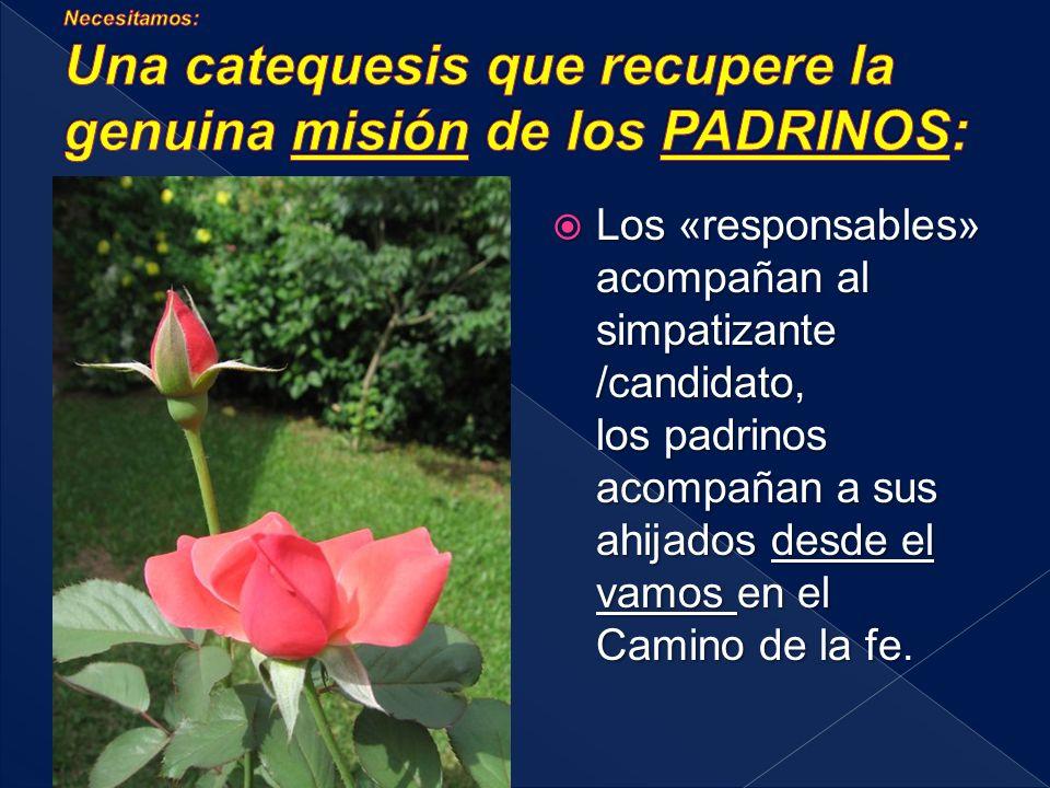 Toda la Comunidad, particularmente los catequistas, «acompañantes responsables», padres / padrinos, amigos... acogen y acompañan a los catecúmenos/cat
