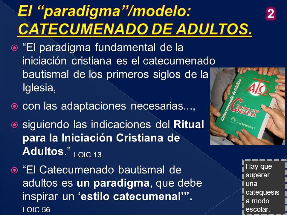Proponemos que el proceso catequístico formativo adoptado por la Iglesia para la iniciación cristiana sea asumido en todo el Continente como la manera