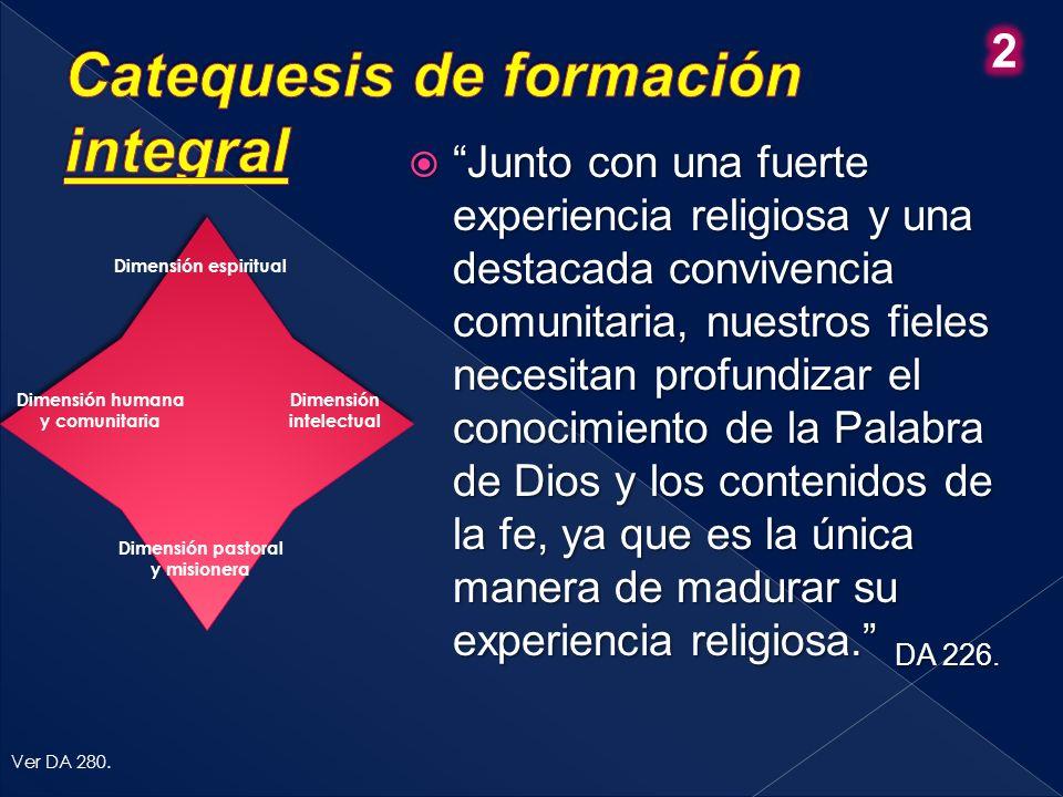 Dimensión espiritual Dimensión humana y comunitaria Dimensión intelectual Dimensión pastoral y misionera Ver DA 280.