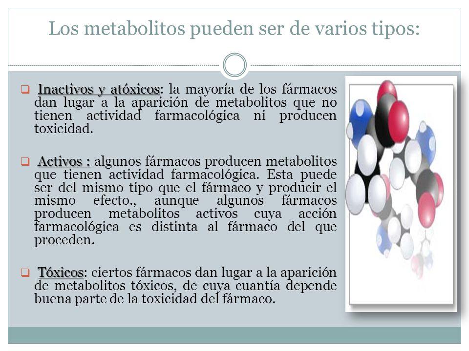 Los metabolitos pueden ser de varios tipos: Inactivos y atóxicos Inactivos y atóxicos: la mayoría de los fármacos dan lugar a la aparición de metaboli