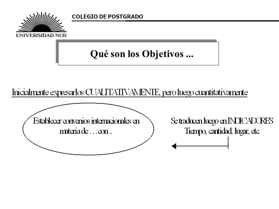 COLEGIO DE POSTGRADO Qué son los Objetivos...