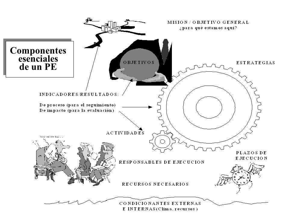 Componentes esenciales de un PE