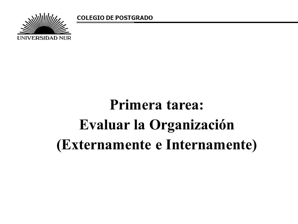 Primera tarea: Evaluar la Organización (Externamente e Internamente) COLEGIO DE POSTGRADO
