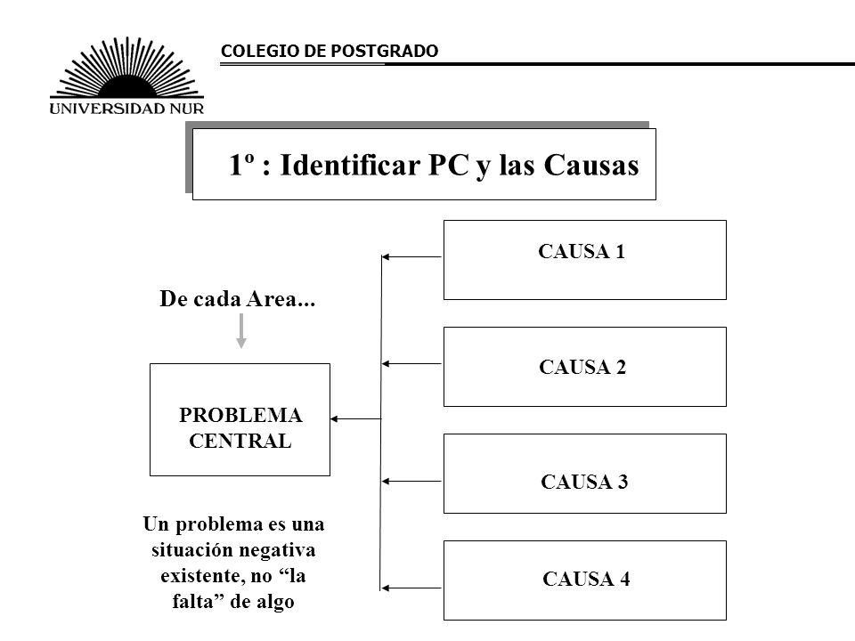 PROBLEMA CENTRAL CAUSA 1 CAUSA 2 CAUSA 3 CAUSA 4 De cada Area... Un problema es una situación negativa existente, no la falta de algo 1º : Identificar