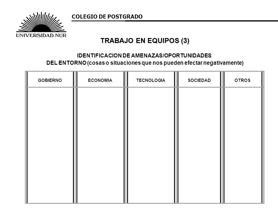 COLEGIO DE POSTGRADO IDENTIFICACION DE AMENAZAS/OPORTUNIDADES DEL ENTORNO (cosas o situaciones que nos pueden efectar negativamente) GOBIERNO ECONOMIA