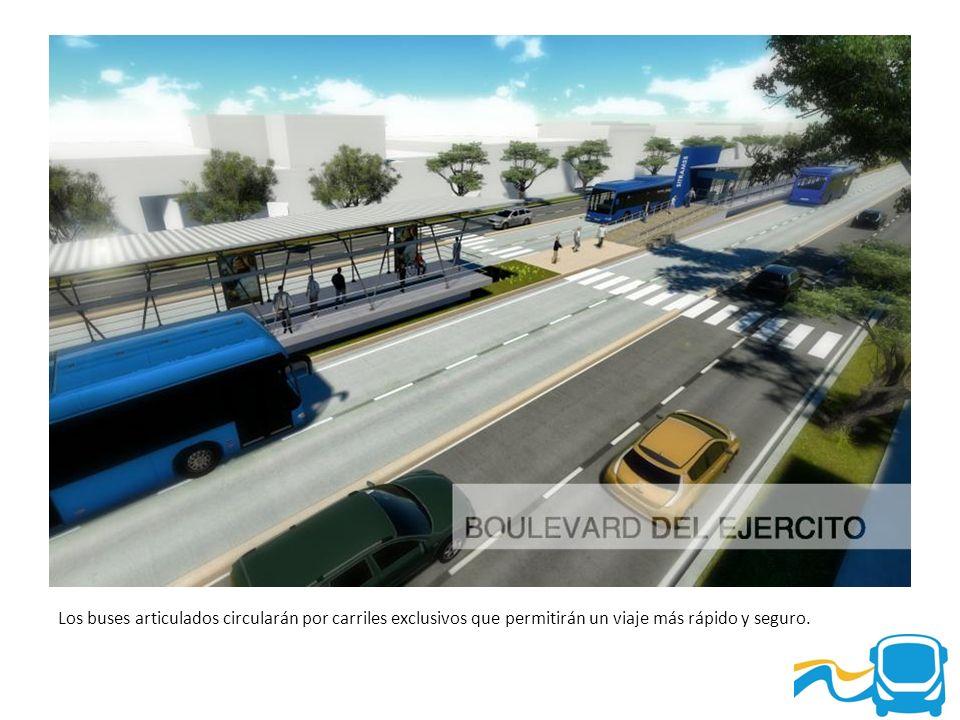 Los buses articulados circularán por carriles exclusivos que permitirán un viaje más rápido y seguro.
