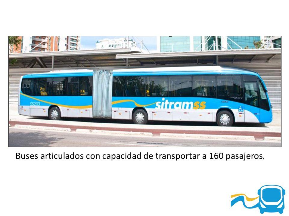 Buses articulados con capacidad de transportar a 160 pasajeros.