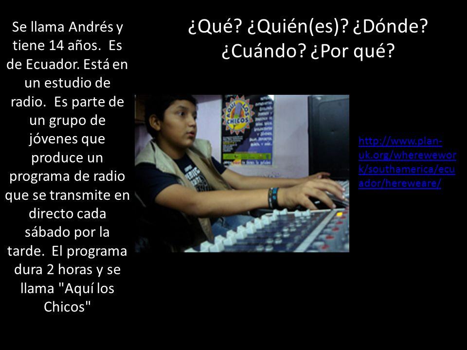 ¿Qué. ¿Quién(es). ¿Dónde. ¿Cuándo. ¿Por qué. Se llama Andrés y tiene 14 años.