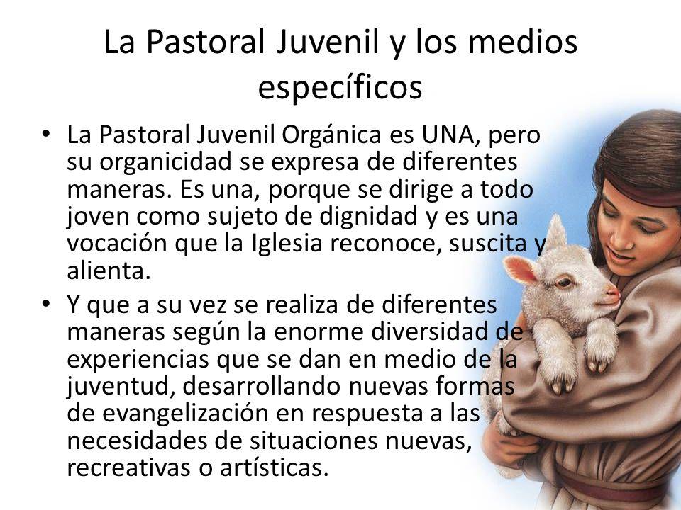 La Pastoral Juvenil y los medios específicos La Pastoral Juvenil Orgánica es UNA, pero su organicidad se expresa de diferentes maneras. Es una, porque