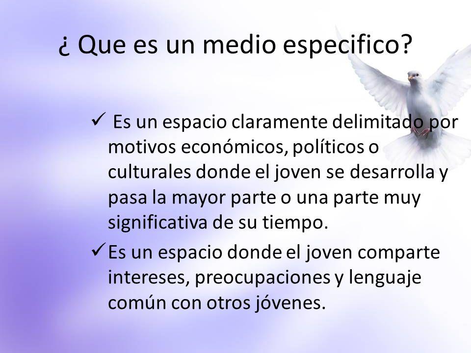 ¿ Que es un medio especifico? Es un espacio claramente delimitado por motivos económicos, políticos o culturales donde el joven se desarrolla y pasa l