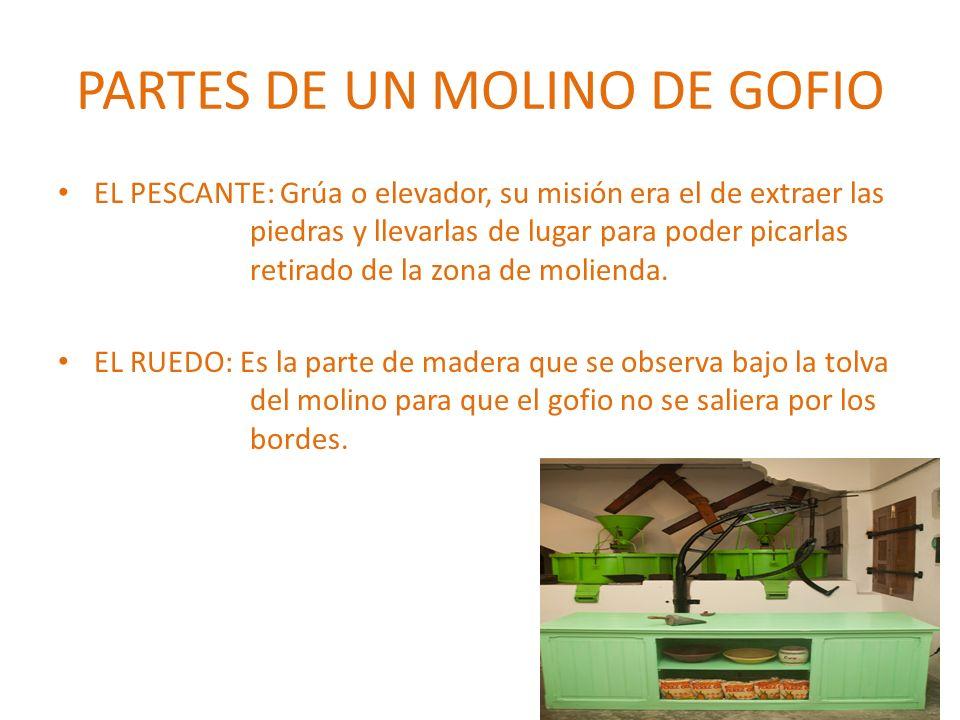 PARTES DE UN MOLINO DE GOFIO LA TOLVA: Recipiente en forma de tronco donde se deposita el grano, que irá cayendo entre las muelas del molino para triturarse y transformarse en harina (gofio).
