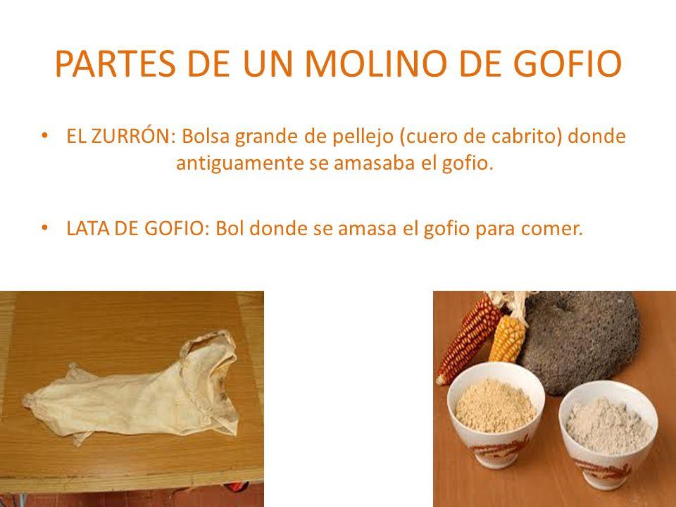 PARTES DE UN MOLINO DE GOFIO EL ZURRÓN: Bolsa grande de pellejo (cuero de cabrito) donde antiguamente se amasaba el gofio. LATA DE GOFIO: Bol donde se