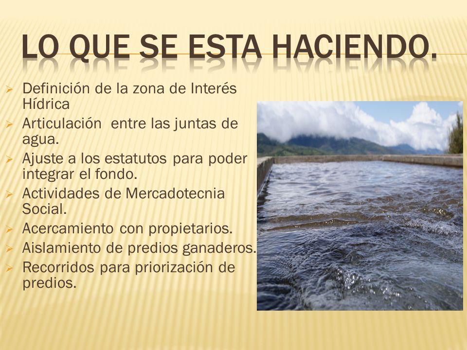 Definición de la zona de Interés Hídrica Articulación entre las juntas de agua. Ajuste a los estatutos para poder integrar el fondo. Actividades de Me