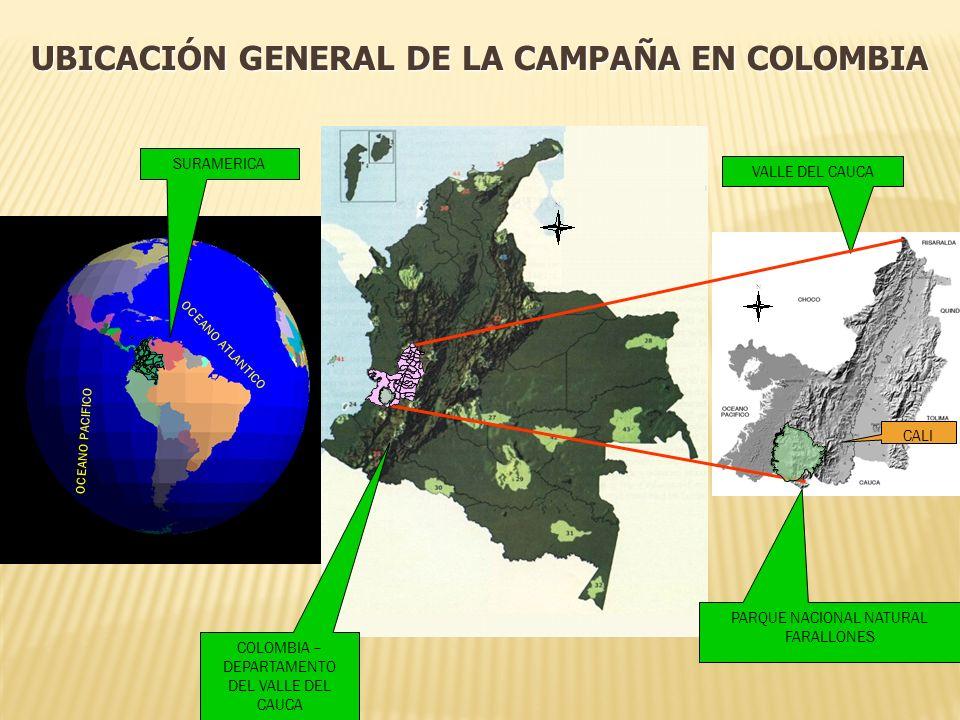 UBICACIÓN GENERAL DE LA CAMPAÑA EN COLOMBIA VALLE DEL CAUCA PARQUE NACIONAL NATURAL FARALLONES CALI SURAMERICA COLOMBIA – DEPARTAMENTO DEL VALLE DEL CAUCA OCEANO PACIFICO OCEANO ATLANTICO