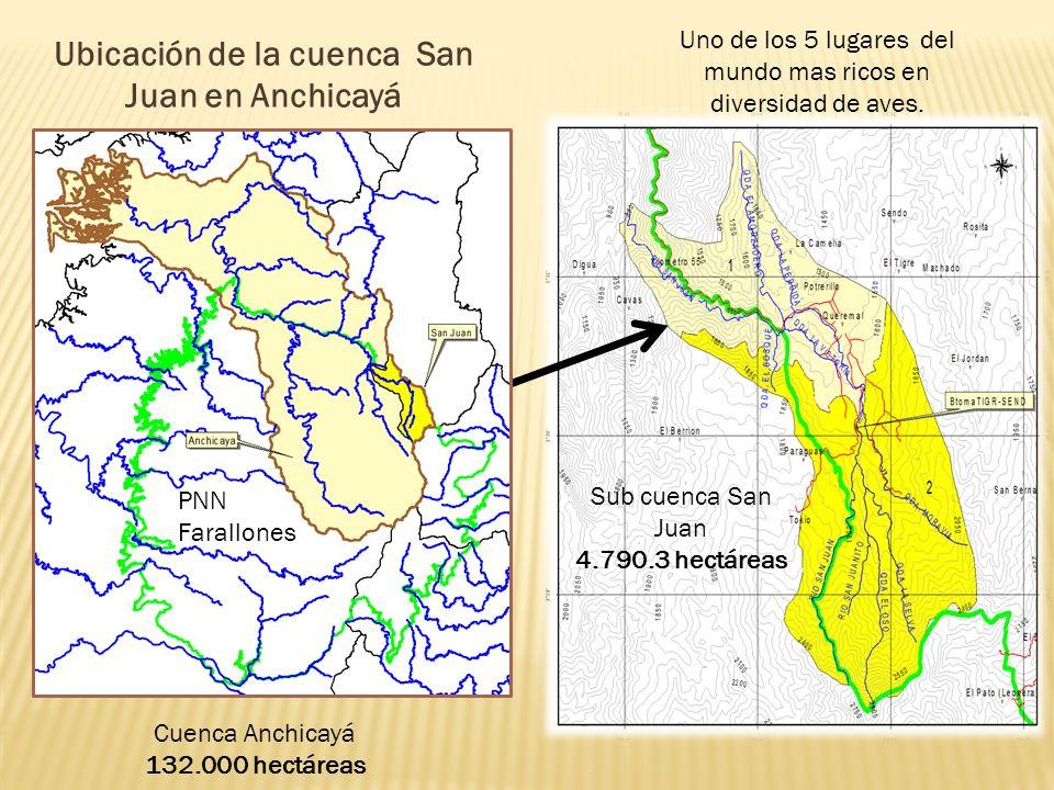 Ubicación de la cuenca San Juan en Anchicayá Cuenca Anchicayá 132.000 hectáreas Sub cuenca San Juan 4.790.3 hectáreas Uno de los 5 lugares del mundo mas ricos en diversidad de aves.