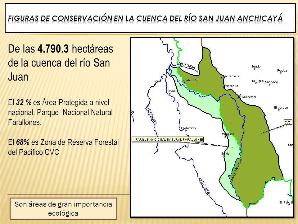 De las 4.790.3 hectáreas de la cuenca del río San Juan El 32 % es Área Protegida a nivel nacional. Parque Nacional Natural Farallones. El 68% es Zona