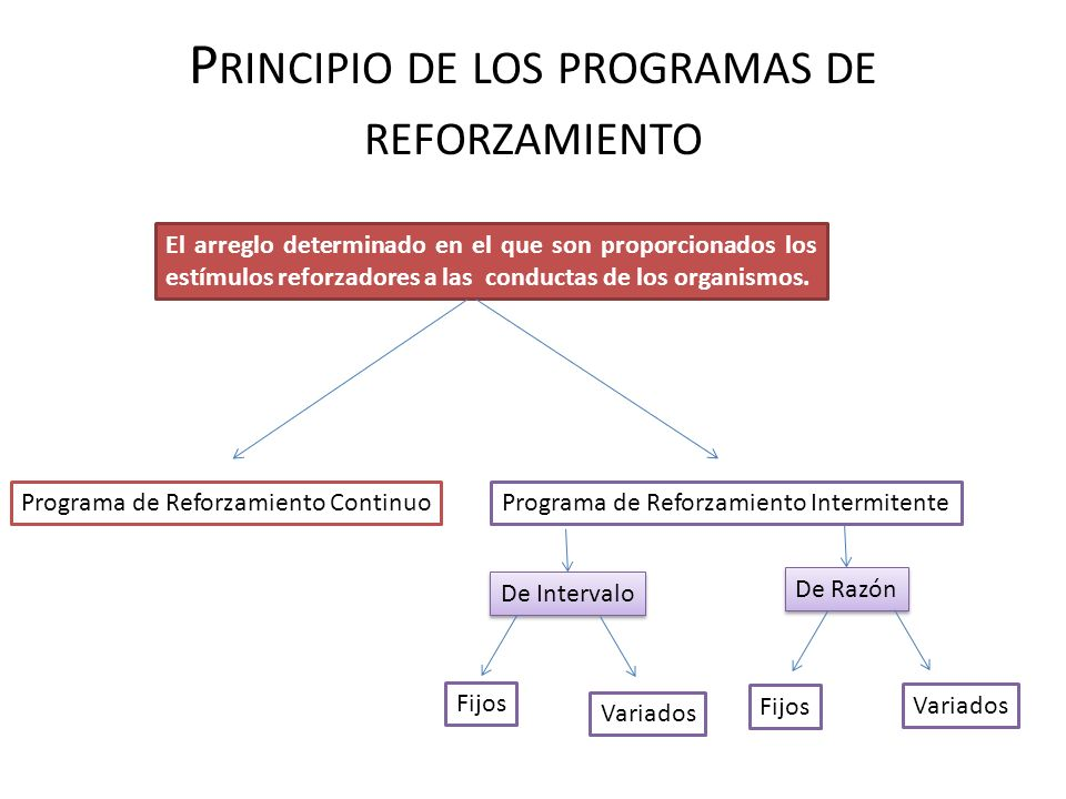 P RINCIPIO DE LOS PROGRAMAS DE REFORZAMIENTO El arreglo determinado en el que son proporcionados los estímulos reforzadores a las conductas de los org