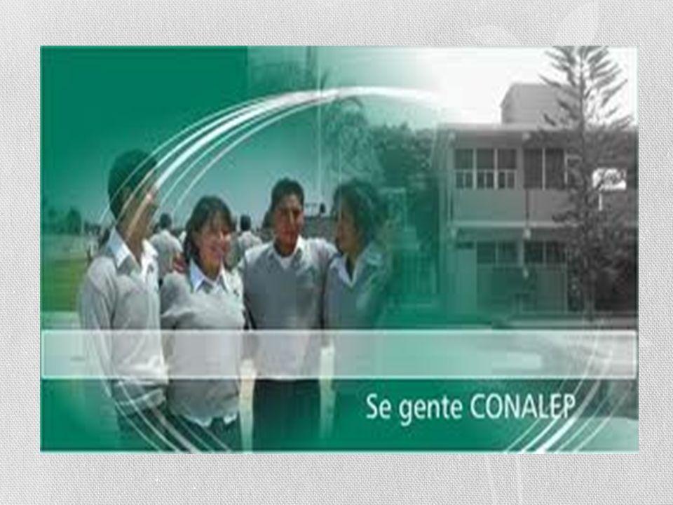 MISION *Formar capital humano de clase mundial en el campo tecnológico para el desarrollo del: Estado de México