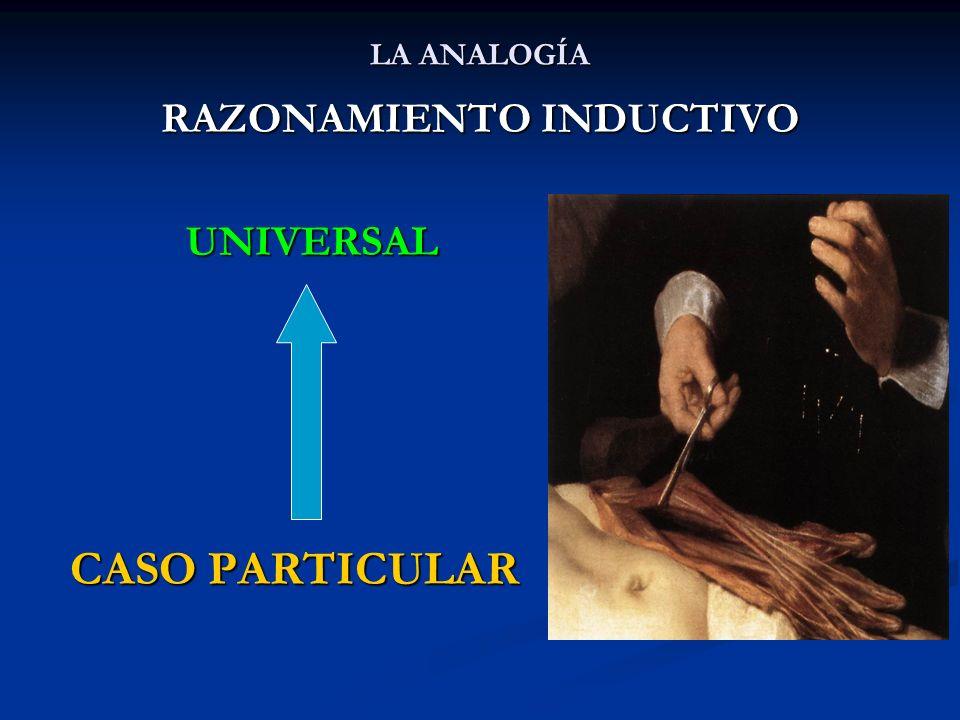 LA ANALOGÍA RAZONAMIENTO INDUCTIVO UNIVERSAL UNIVERSAL CASO PARTICULAR CASO PARTICULAR