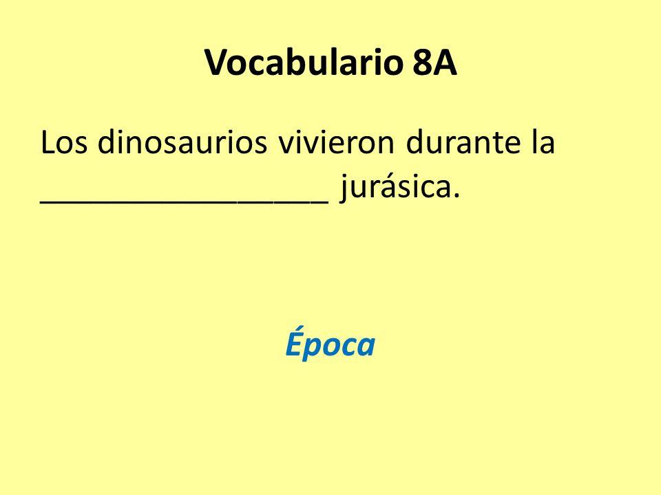 Vocabulario 8A Los dinosaurios vivieron durante la ________________ jurásica. Época