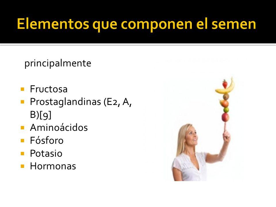 principalmente Fructosa Prostaglandinas (E2, A, B)[9] Aminoácidos Fósforo Potasio Hormonas