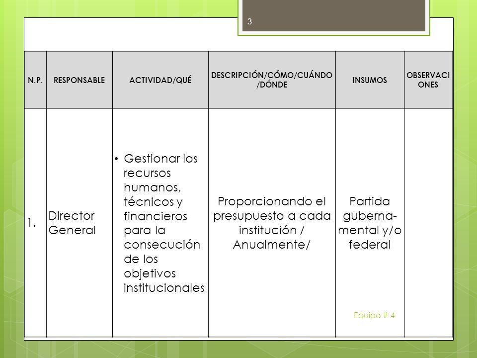 N.P.RESPONSABLEACTIVIDAD/QUÉ DESCRIPCIÓN/CÓMO/CUÁNDO /DÓNDE INSUMOS OBSERVACI ONES 1. Director General Gestionar los recursos humanos, técnicos y fina