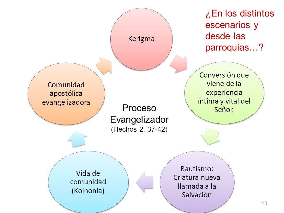 Proceso Evangelizador (Hechos 2, 37-42) Kerigma Conversión que viene de la experiencia íntima y vital del Señor.