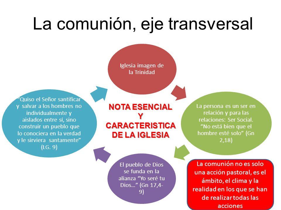 La comunión, eje transversal Iglesia imagen de la Trinidad La persona es un ser en relación y para las relaciones: Ser Social.