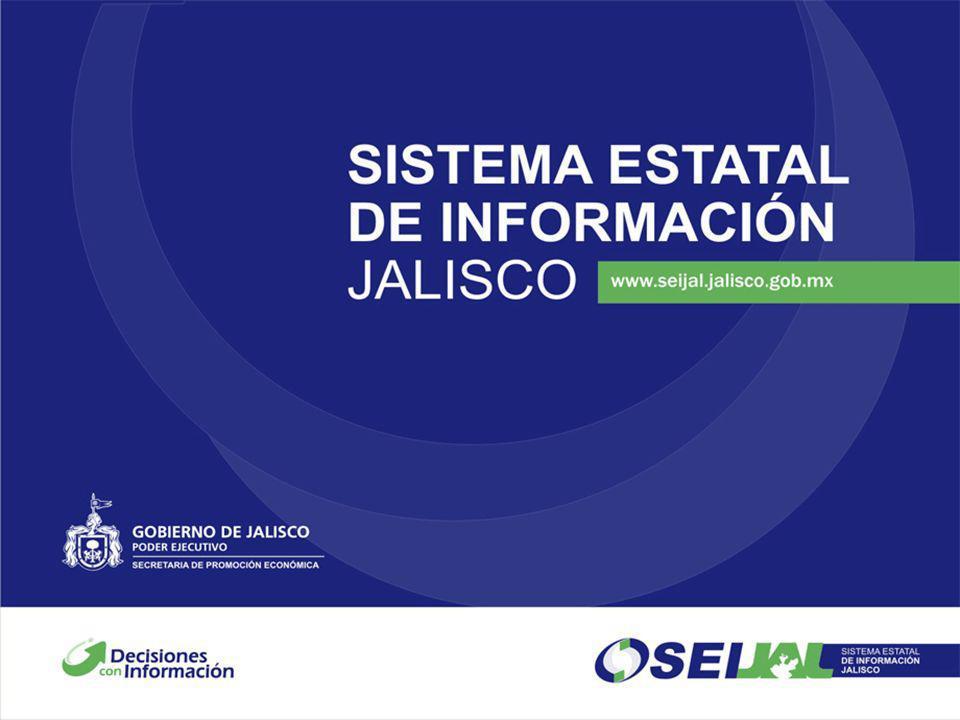 Estudio de derrama económica Generada por los visitantes y compradores que concurren en Villa Hidalgo, Jalisco en el periodo de noviembre - diciembre de 2007 (temporada alta) por la actividad textil y de vestir.