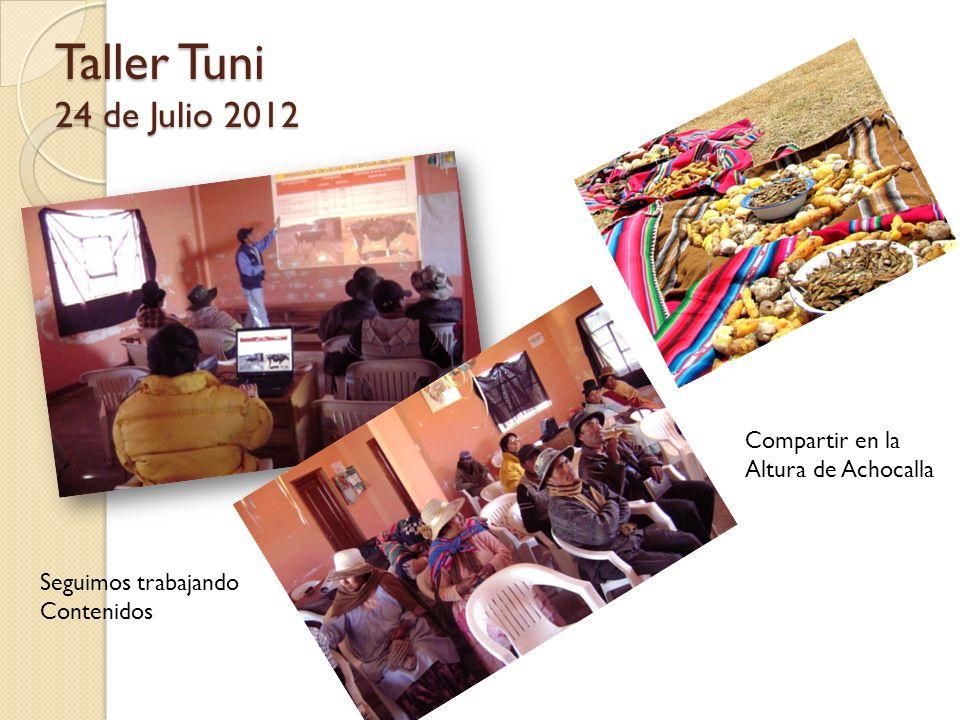 Taller Tuni 24 de Julio 2012 Compartir en la Altura de Achocalla Seguimos trabajando Contenidos