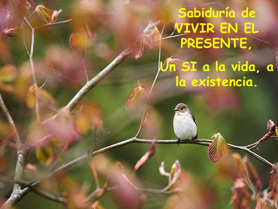 Sabiduría de VIVIR EN EL PRESENTE, Un SI a la vida, a la existencia.
