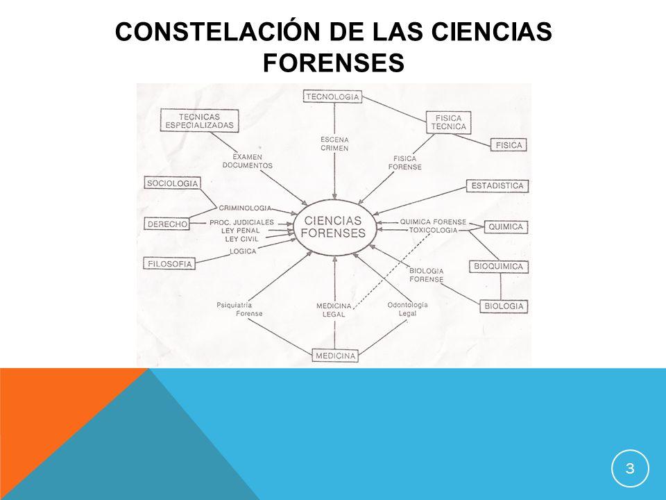CONSTELACIÓN DE LAS CIENCIAS FORENSES 3