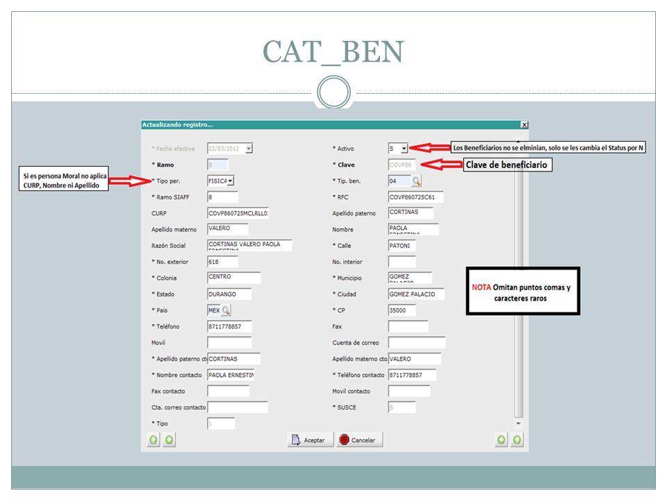 Una vez que llenamos los campos damos click en CAT_BEN