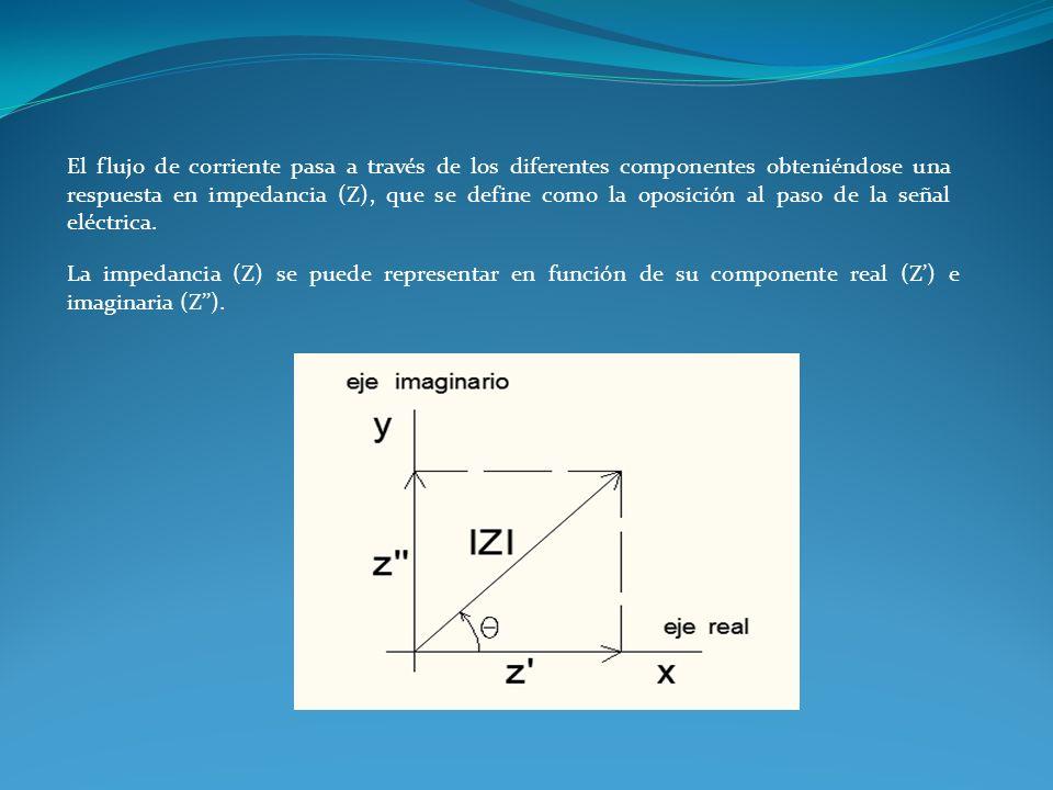 El flujo de corriente pasa a través de los diferentes componentes obteniéndose una respuesta en impedancia (Z), que se define como la oposición al pas