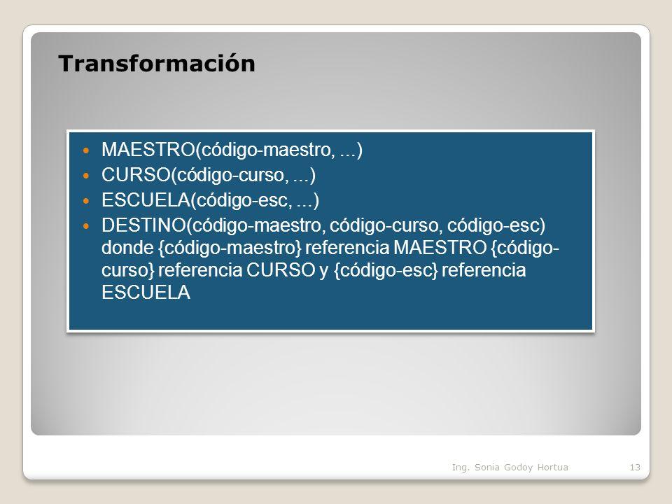 Transformación Ing. Sonia Godoy Hortua13
