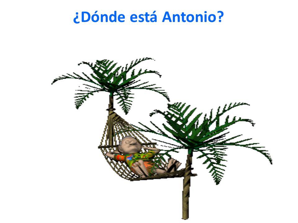 ¿Dónde está Antonio?