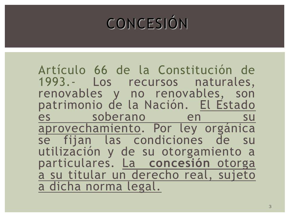 3CONCESIÓN Artículo 66 de la Constitución de 1993.- Los recursos naturales, renovables y no renovables, son patrimonio de la Nación.