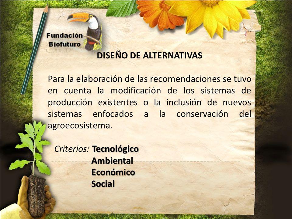 DISEÑO DE ALTERNATIVAS Para la elaboración de las recomendaciones se tuvo en cuenta la modificación de los sistemas de producción existentes o la incl