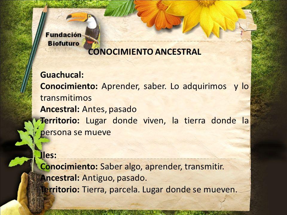 CONOCIMIENTO ANCESTRAL Guachucal: Conocimiento: Aprender, saber. Lo adquirimos y lo transmitimos Ancestral: Antes, pasado Territorio: Lugar donde vive
