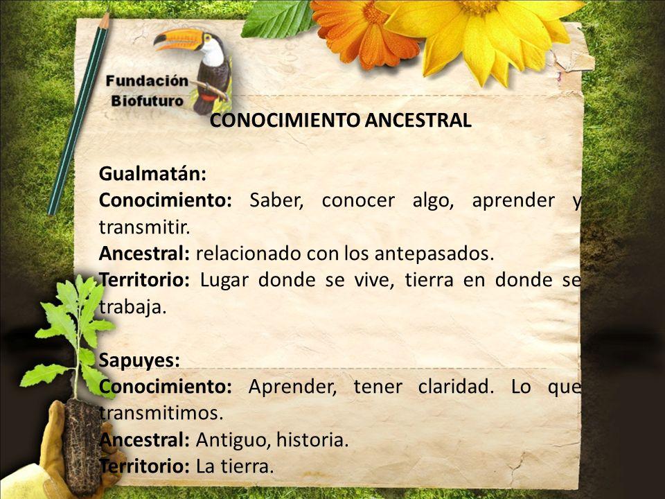 CONOCIMIENTO ANCESTRAL Gualmatán: Conocimiento: Saber, conocer algo, aprender y transmitir. Ancestral: relacionado con los antepasados. Territorio: Lu