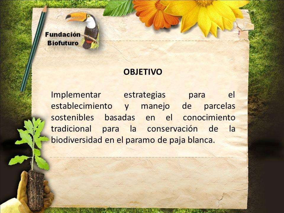 OBJETIVO Implementar estrategias para el establecimiento y manejo de parcelas sostenibles basadas en el conocimiento tradicional para la conservación